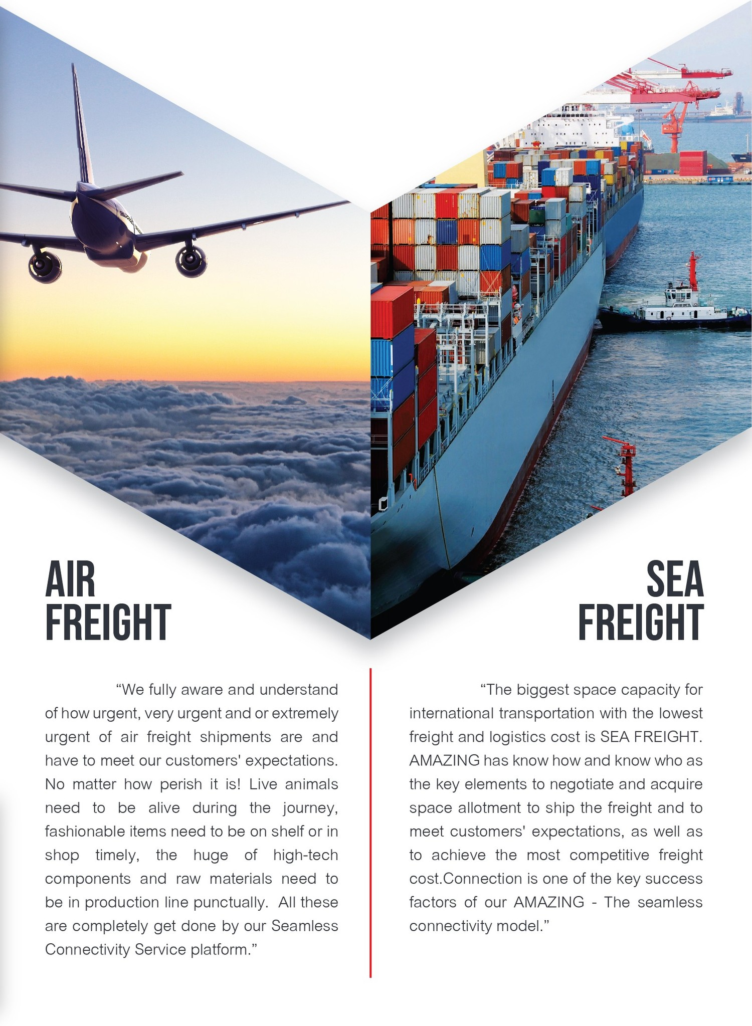 Air Freight / Sea Freight